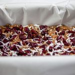 Cranberry Coconut Bars