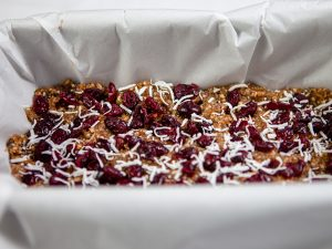 cranberry coconut bars 1