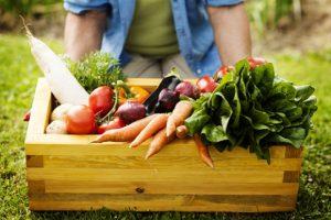 organic gardening 3